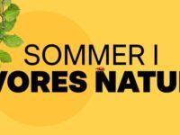 Ideer til sommeroplevelser i VORES NATUR