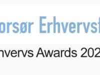 Erhvervs Awards 2021